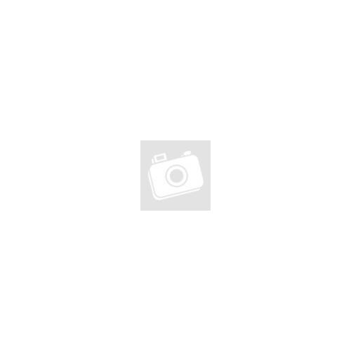 iPhone Töltő Adapter Dupla 2A